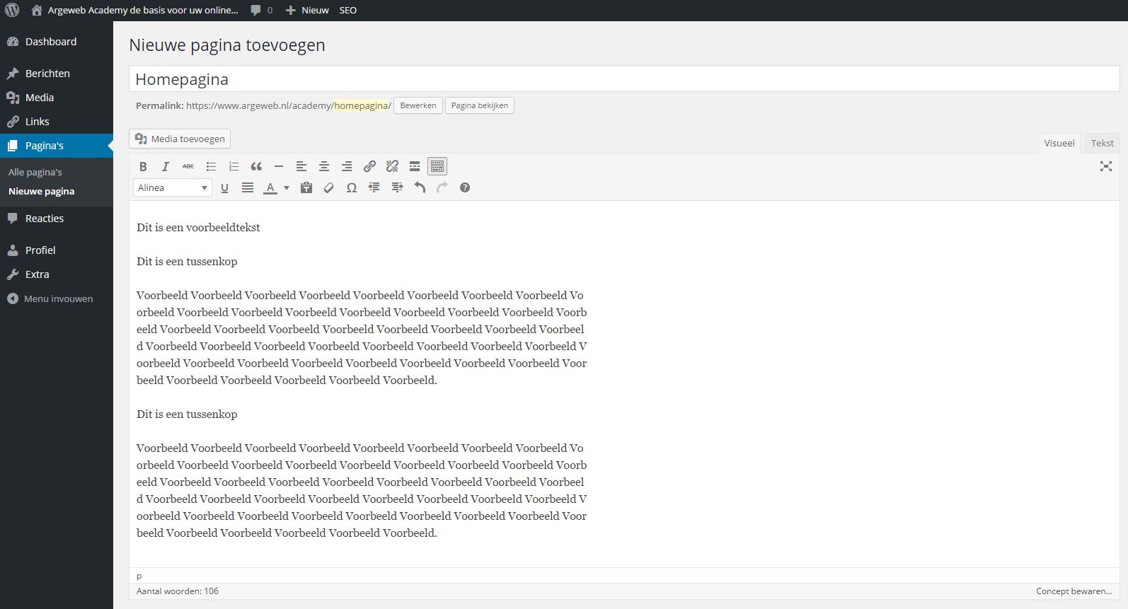 Voorbeeld WordPress site