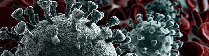 maatregelen argeweb coronavirus