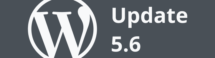 wordpress update 5.6