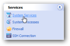 System Services