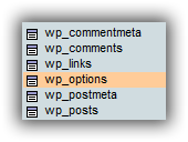 wp_options